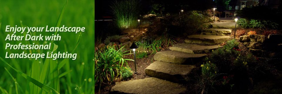 professional landscape path lighting